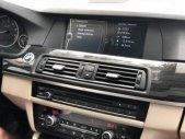 Bán BMW 5 Series 523i năm sản xuất 2010, màu trắng, nhập khẩu, giá tốt giá 879 triệu tại Tp.HCM