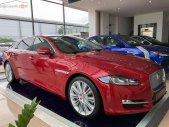 Cần bán Jaguar XJ Porfolio năm 2019, màu trắng, nhập khẩu giá 6 tỷ 539 tr tại Tp.HCM