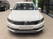 Bán ô tô Volkswagen Passat BlueMotion năm 2018 giá 1 tỷ 480 tr tại Khánh Hòa