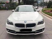 Bán BMW 520i sản xuất 2014, màu trắng, nhập khẩu   giá 1 tỷ 390 tr tại Hà Nội