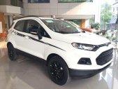 Bán Ford Ecosport Tianium mới 2019, đủ màu, ưu đãi khủng, hỗ trợ 80%, giao ngay giá 595 triệu tại Hà Nội