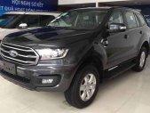 Cần bán Ford Everest Ambiente 4x2 AT đời 2019, nhập khẩu nguyên chiếc giá 972 triệu tại Hà Nội