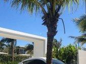 Cần bán xe Nissan Sunny đời 2013, màu trắng chính chủ giá 340 triệu tại Tp.HCM