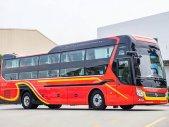 Xe SAMCO 34 giường VIP Hyundai 2020 giá 3 tỷ tại Tp.HCM
