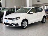 Volkswagen Polo hatchback 2020, nhập khẩu nguyên chiếc giá 695 triệu tại Quảng Ninh