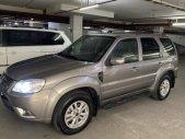 Cần bán xe Ford Escape XLT 2.3L 4x4 (2 cầu) 2013, chính chủ giá 450 triệu tại Tp.HCM