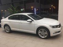 (Đạt David) Bán Volkswagen Passat Bluemotion đời 2017, màu trắng,xe mới 100% nhập khẩu chính hãng LH:0933.365.188 giá 1 tỷ 450 tr tại Tp.HCM