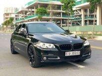 Cần bán xe BMW 5 Series 520LCI năm 2017, nhập khẩu nguyên chiếc   giá 1 tỷ 690 tr tại Tp.HCM