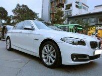 Bán BMW 5 Series 520i SX 2016, đi 22000km, còn rất mới giá 1 tỷ 600 tr tại Tp.HCM