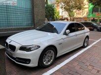 Cần bán lại xe BMW 5 Series 520i năm 2015, màu trắng, nhập khẩu nguyên chiếc giá 1 tỷ 450 tr tại Hà Nội