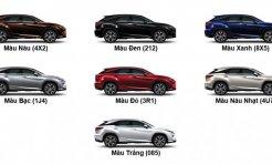 Xe Lexus màu nào đẹp và hợp phong thủy với bạn nhất
